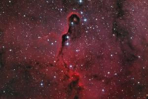 """Туманность IC 1396A """"Хобот слона"""""""