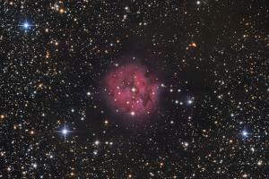 """Туманность IC 5146 """"Кокон"""""""