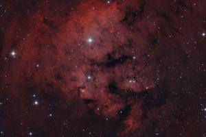 Туманность NGC 7822, биколор